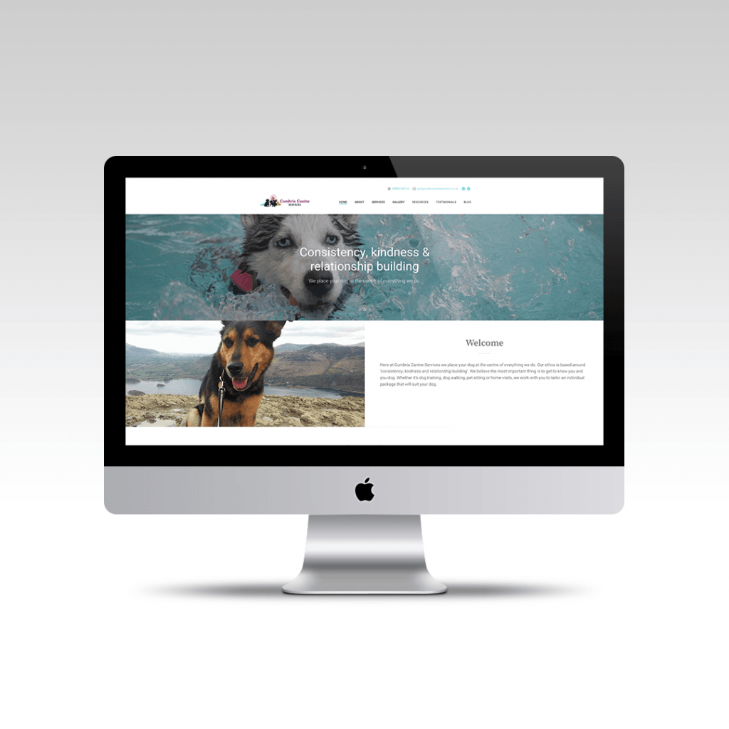 Home page website design featuring the hero section for Cumbria Canine Services