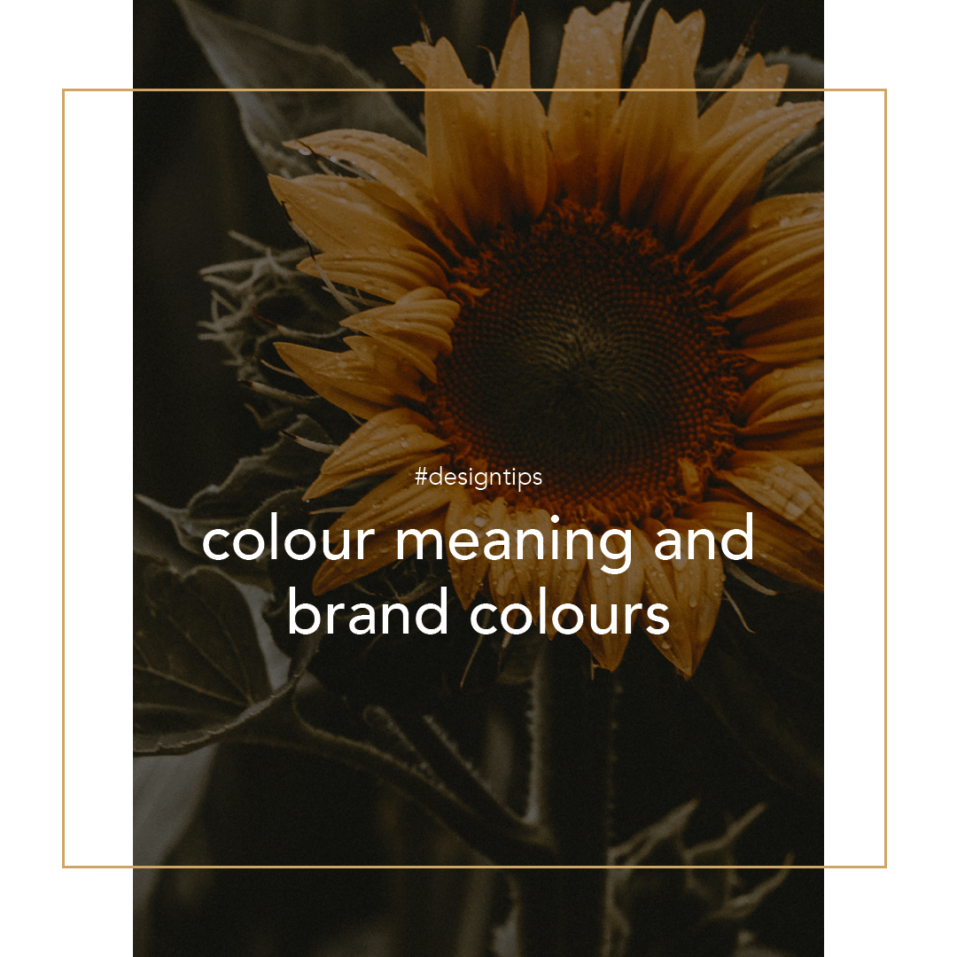 Brand Colours - colour meaning for business graphic for design tips