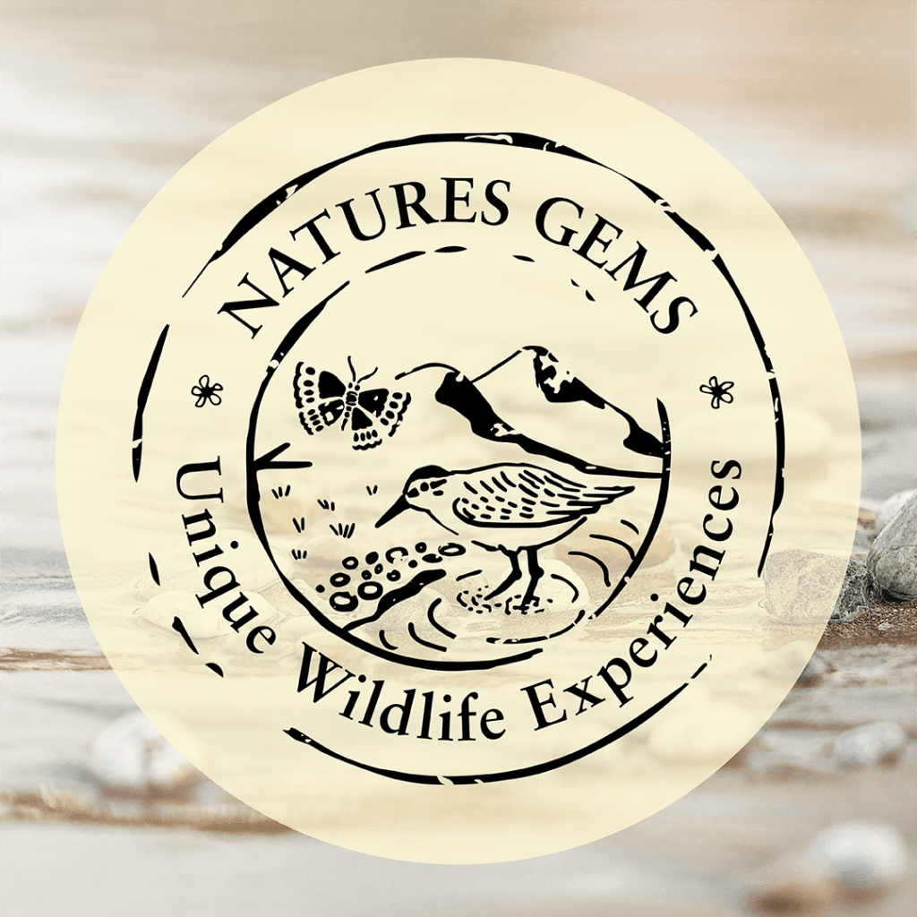 Natures Gems Tours logo on a transparent background over a water bird image